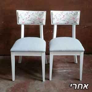 2 כיסאות שנצבעו בלבן