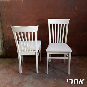 2 כיסאות לאחר צבע
